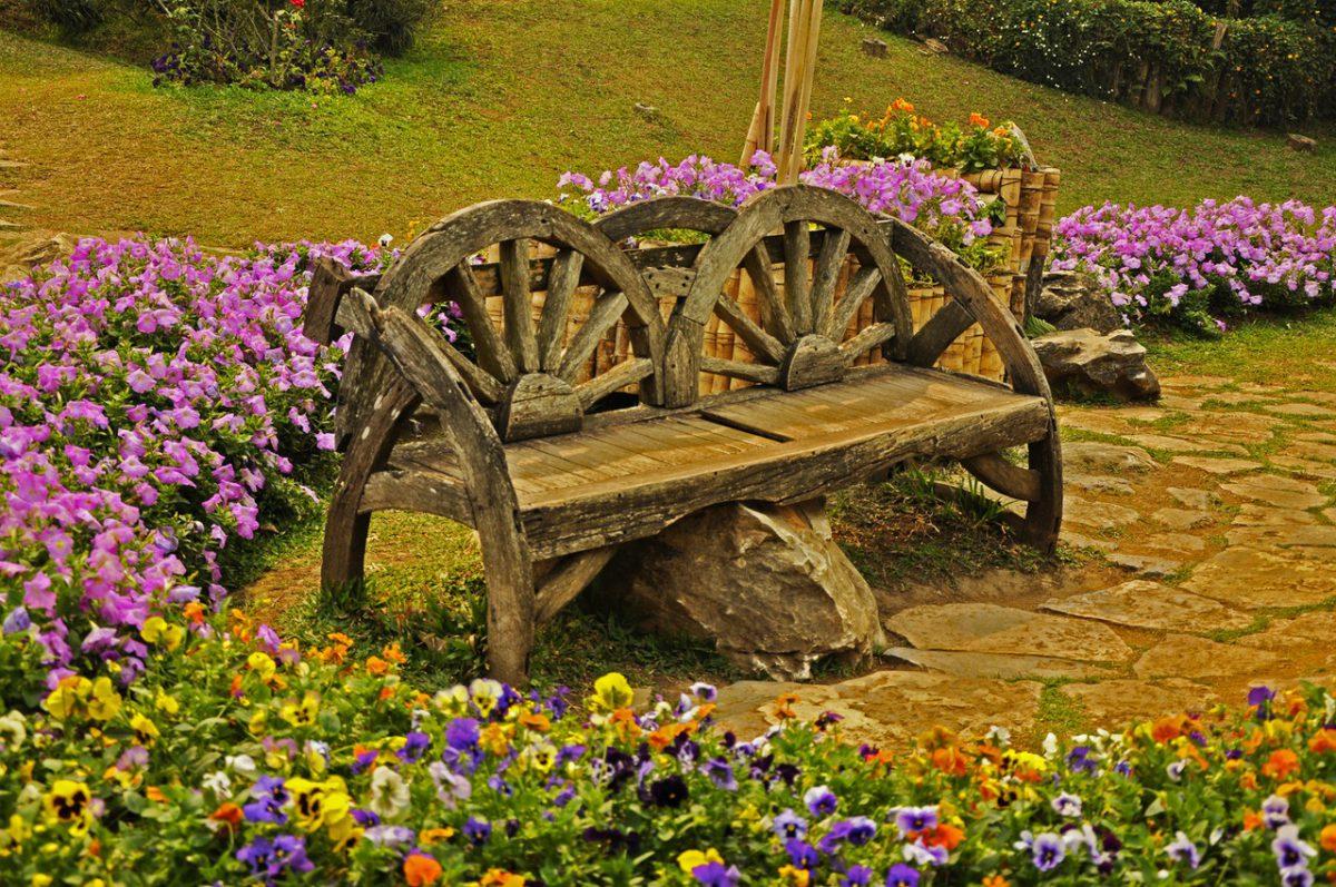 Piękne kwiaty to dużo pracy